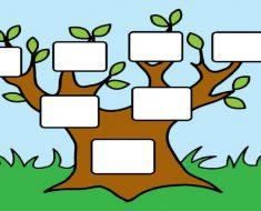 Atividades sobre árvore genealógica para imprimir e baixar em PDF