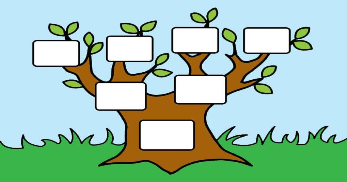Well-known Atividades sobre árvore genealógica para imprimir e baixar em PDF TZ75