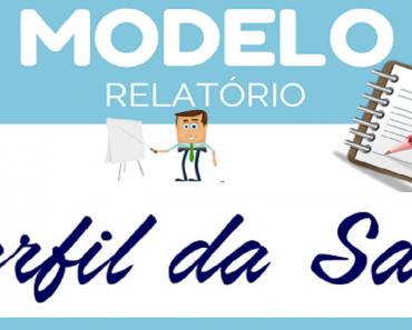 Modelo de Relatório perfil da turma - Dicas e Sugestões - Modelos Prontos