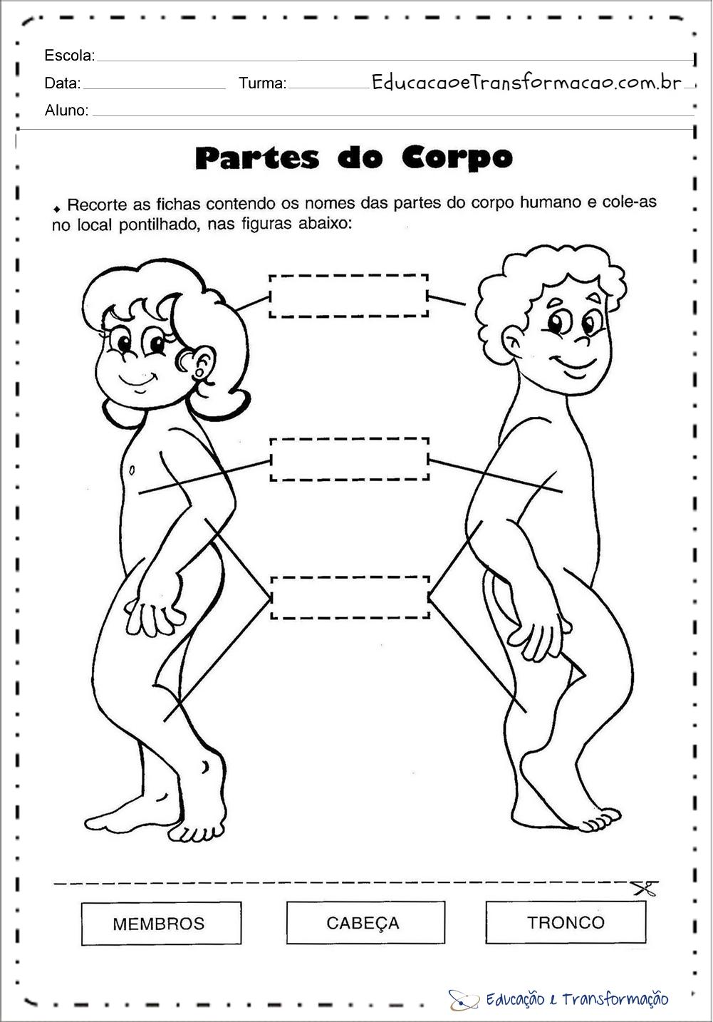 Atividades Corpo Humano - Partes do corpo
