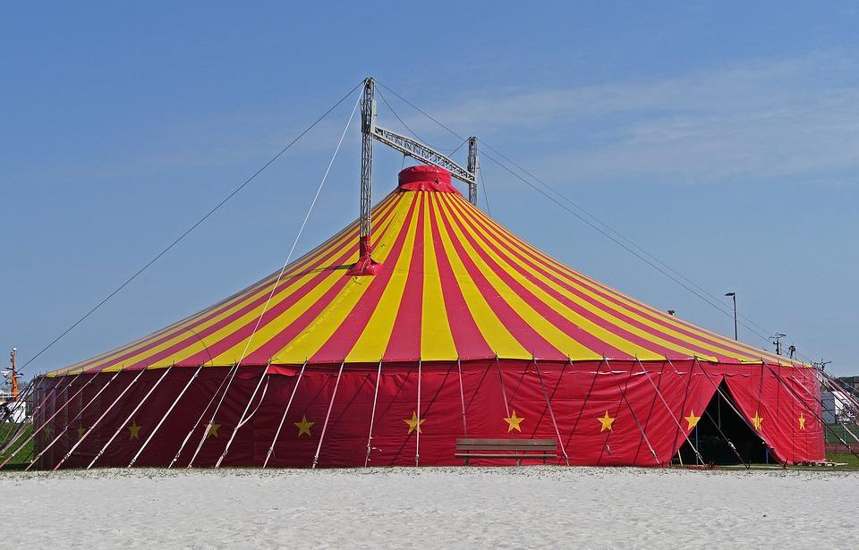Plano de Aula Dia do Circo Educação Infantil