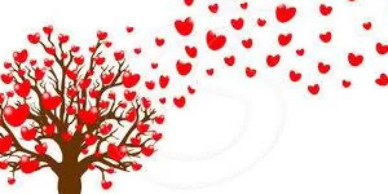 Dinâmicas para Reunião de Pais: Dinâmica do Amor