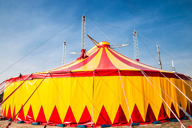 Projeto Dia do Circo para Ensino Fundamental