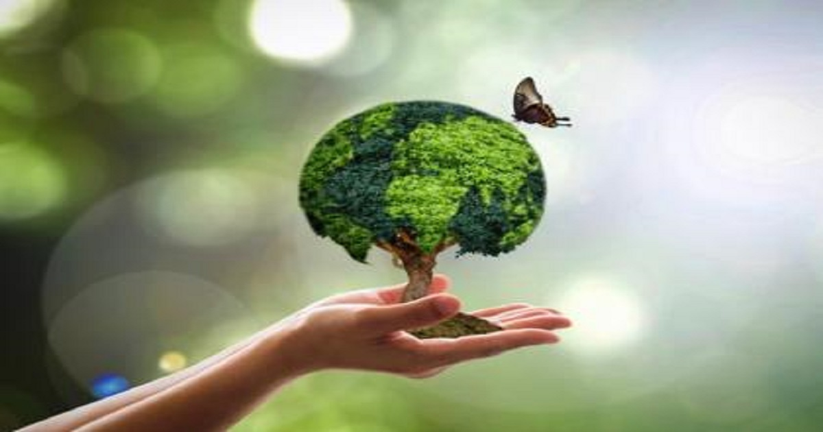 Plano de aula sobre meio ambiente para 3 ano