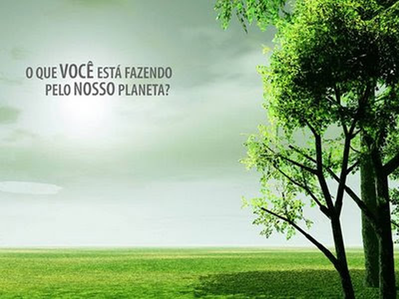 Frases Sobre O Meio Ambiente Mensagens Sobre A Preservação