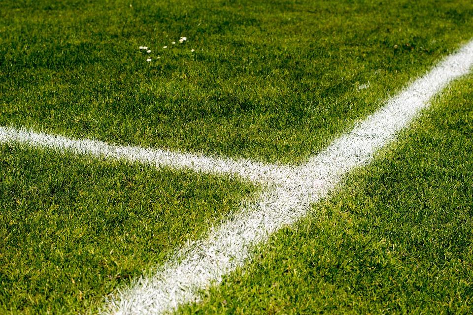 Atividades de Interpretação de Texto Copa do Mundo - O tataravô do futebol