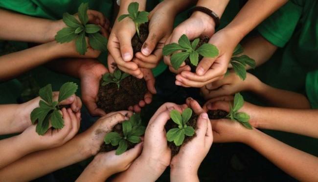 Dinâmica sobre Meio Ambiente -Trilha ecológica