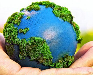 Plano de aula sobre meio ambiente educação infantil