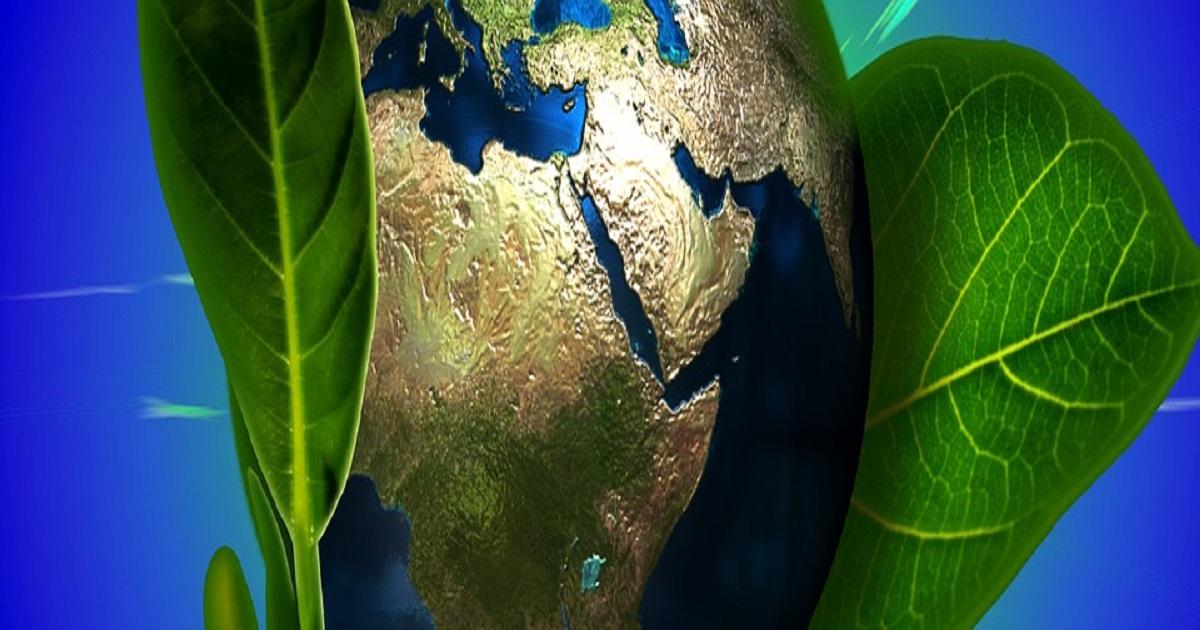Textos sobre meio ambiente