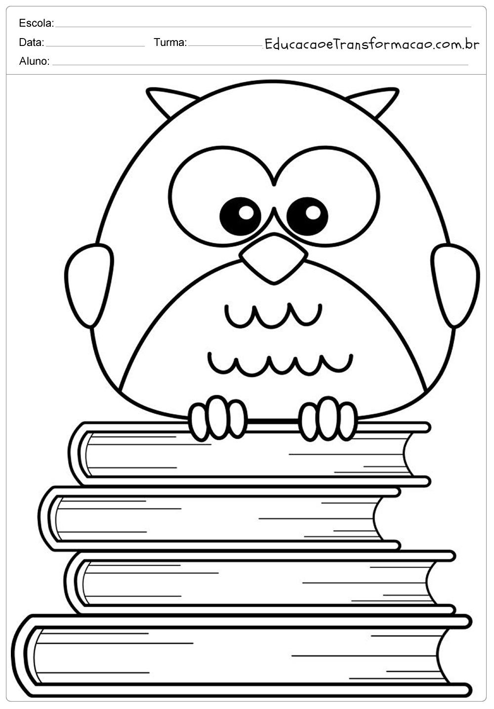 Desenho De Coruja Para Colorir Livros Educacao E Transformacao