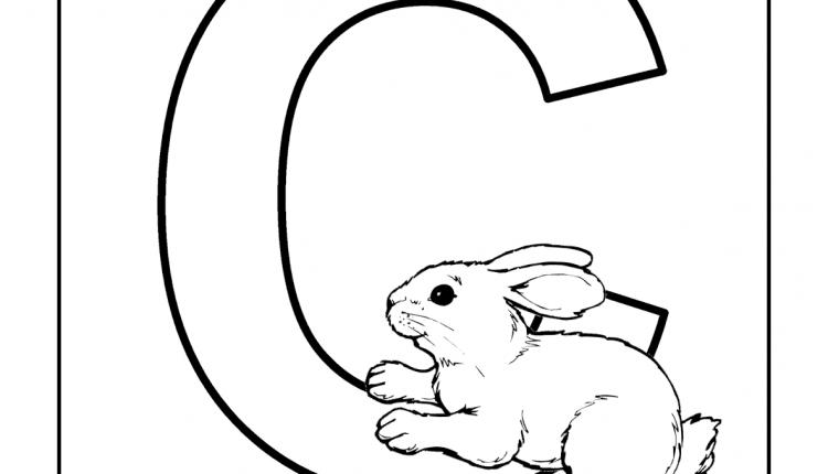 Alfabeto com animais – Letras do Alfabeto – C
