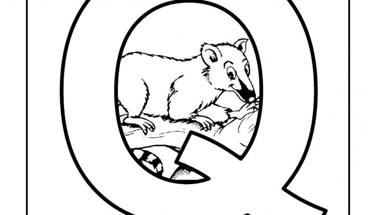 Alfabeto com animais – Letras do Alfabeto – Q