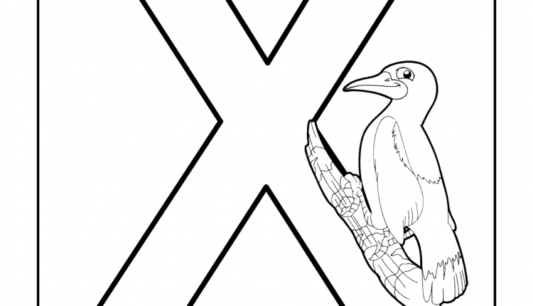 Alfabeto com animais – Letras do Alfabeto – X