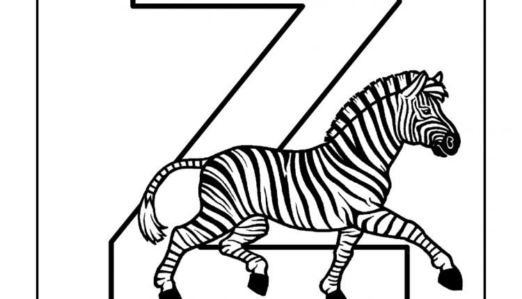 Alfabeto com animais – Letras do Alfabeto – Z