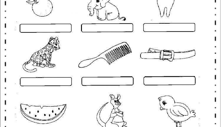 Atividades de Alfabetização com AN, EN, IN, ON e UN – Escreva nomes