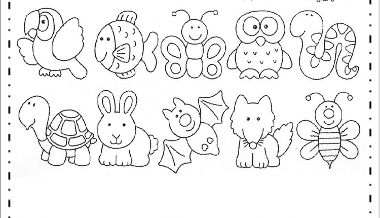 Desenho De Animais Para Colorir E Imprimir Educacao E Transformacao