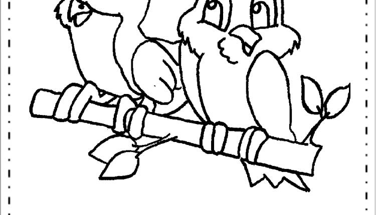 Pássaros Para Colorir E Imprimir Desenhos De Animais