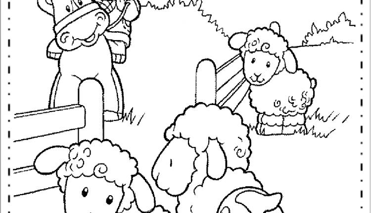 Ovelhas Para Imprimir E Colorir Desenhos De Animais Educacao E