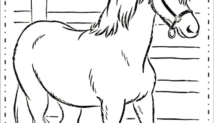Desenhos De Animais Da Fazenda Cavalos Para Colorir Educacao E