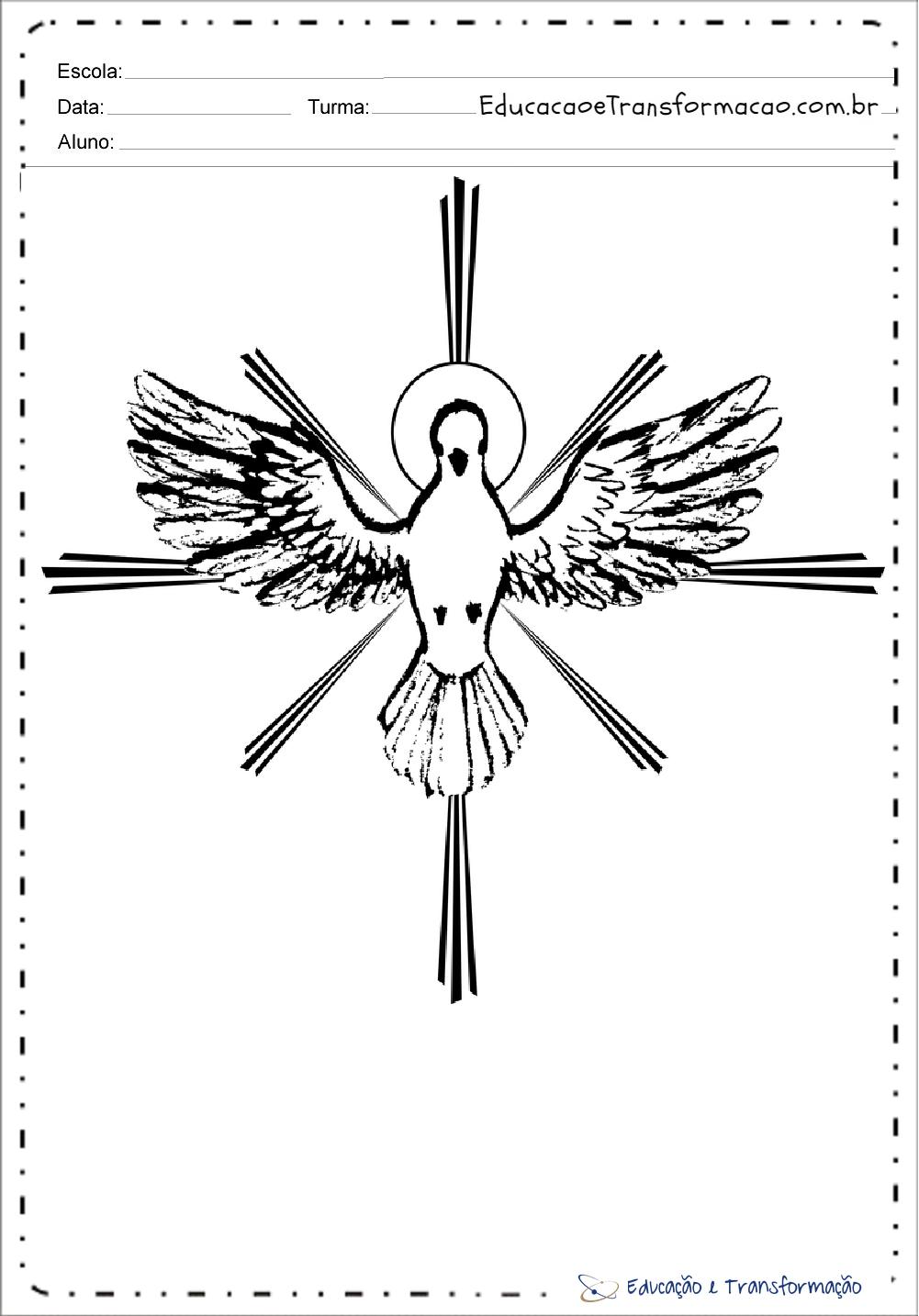 Desenhos De Pombas Do Espirito Santo Educacao E Transformacao