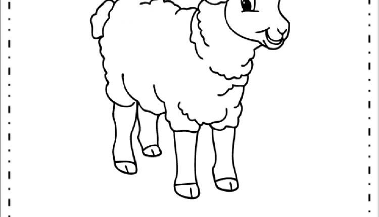 Desenhos De Animais Da Fazenda Ovelha Para Colorir Educacao E