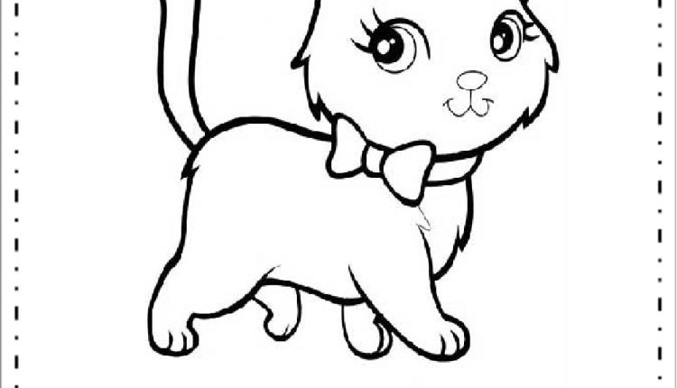 Gato Colorir Para Imprimir Desenhos De Animais Educacao E