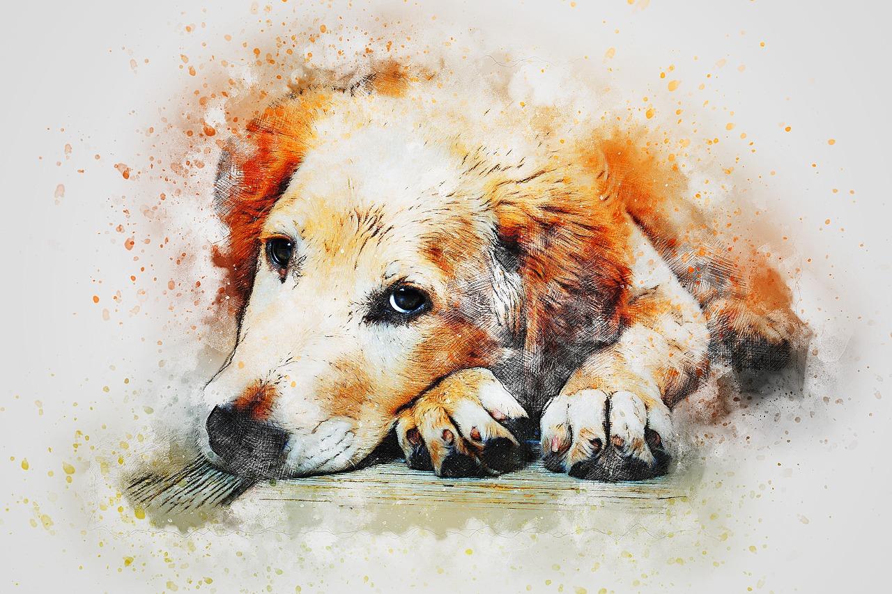 Desenhos para colorir de Cachorro